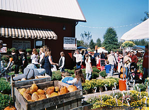 Milburn Orchards, Elkton, Maryland is typical of the family fun agritourism destinations
